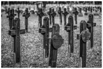 Südfriedhof Nürnberg, Kriegsgräberstätte