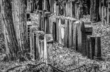Jüdischer Friedhof Fürth